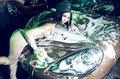 【改装与激情】Panamera享私浴 缠斗激情