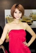 2010(第五届)上海国际汽车改装博览会车模