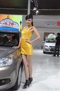 2012年第12届新疆国际工业汽车博览会车模