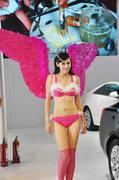 2013年齐鲁秋季车展美女车模