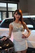 2012第二届贵阳汽车文化节美女车模