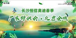 长沙恒信奥迪317春季厂家特供 礼惠全城!