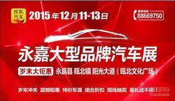 搜狐汽车2015 永嘉大型品牌汽车展要来啦