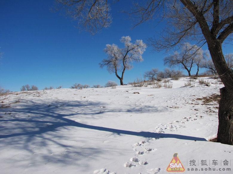 冬景 大雪无痕 有痕 冬天到啦,送点雪花的祝福吧