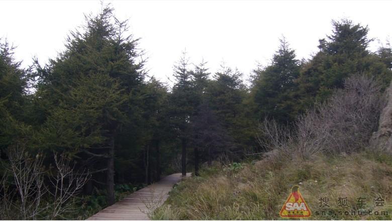 白草畔自然风景区_百花山